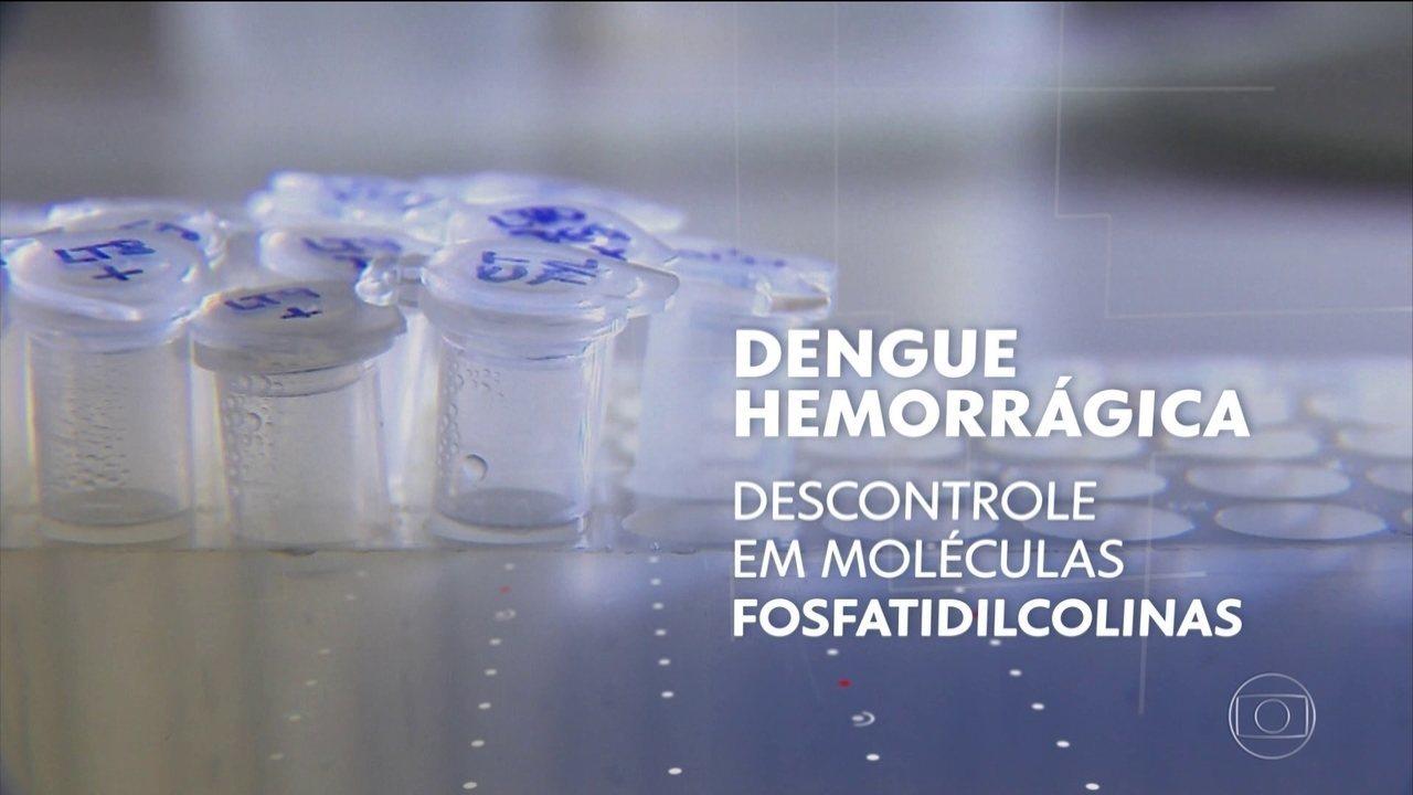 Pesquisadores da Unicamp descobrem maneira de detectar evolução da dengue hemorrágica