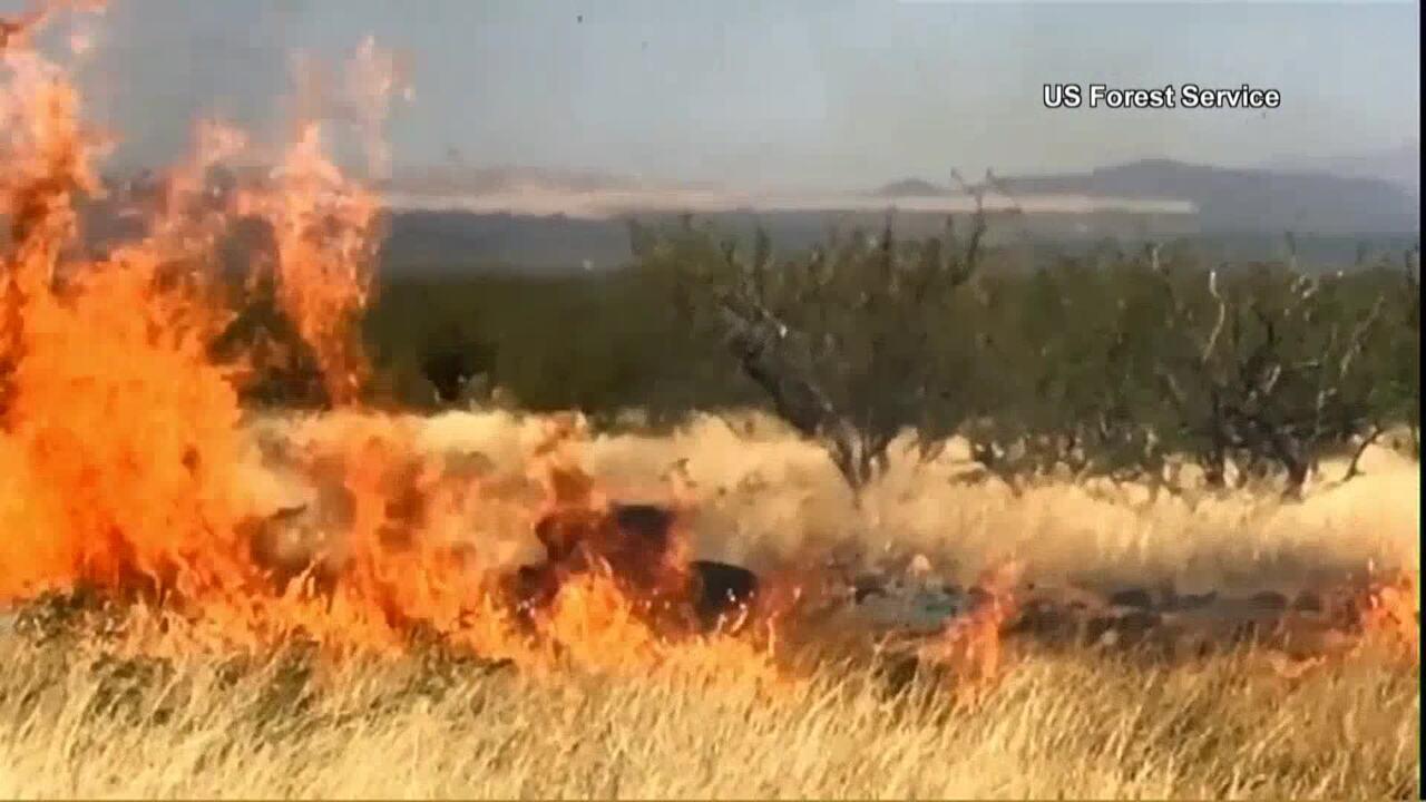 Festa para revelar sexo de um bebê termina em incêndio florestal no Arizona, EUA