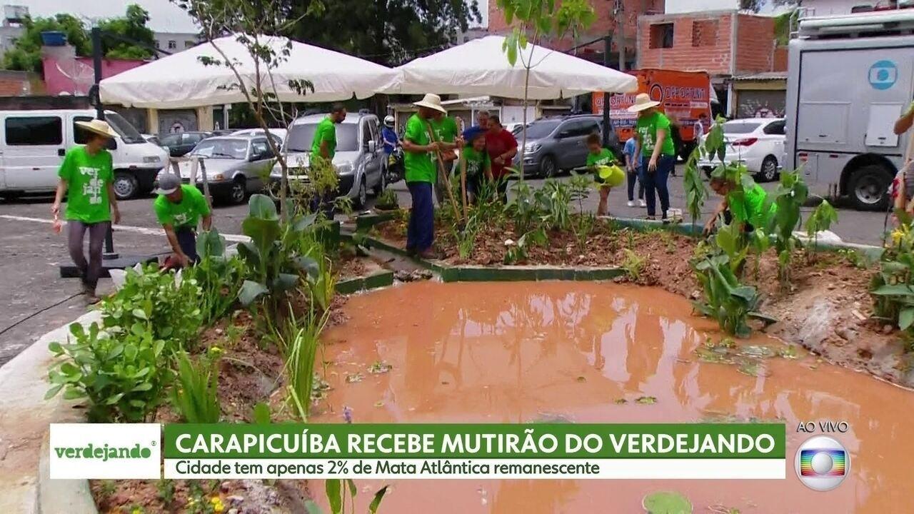 Verdejando faz mutirão em Carapicuíba na Região Metropolitana da capital