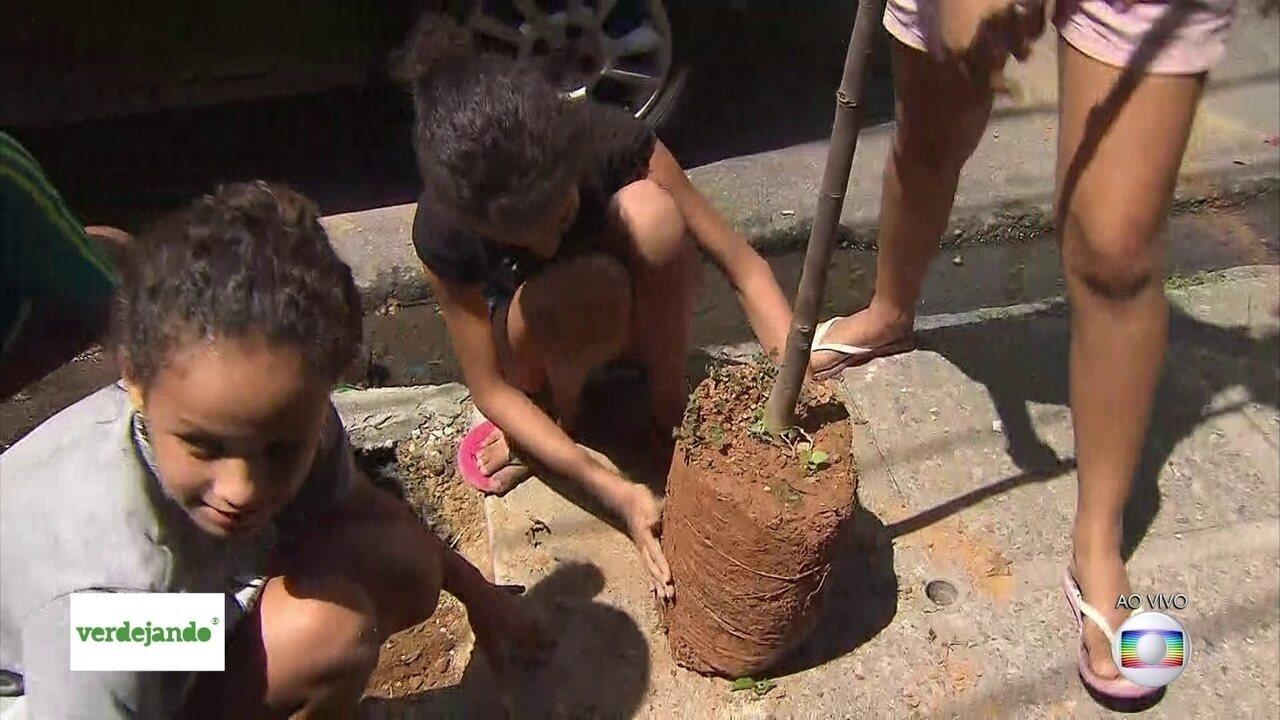 Crianças ajudam a plantar mudas no bairro de São José, no Centro do Recife