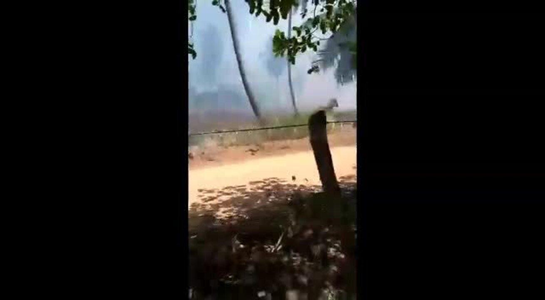 Fogo em vegetação assusta moradores de Ipioca, em Maceió