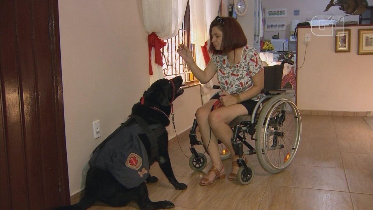Resultado de imagem para Cadeirante após síndrome rara, bióloga treina seu próprio cão de assistência