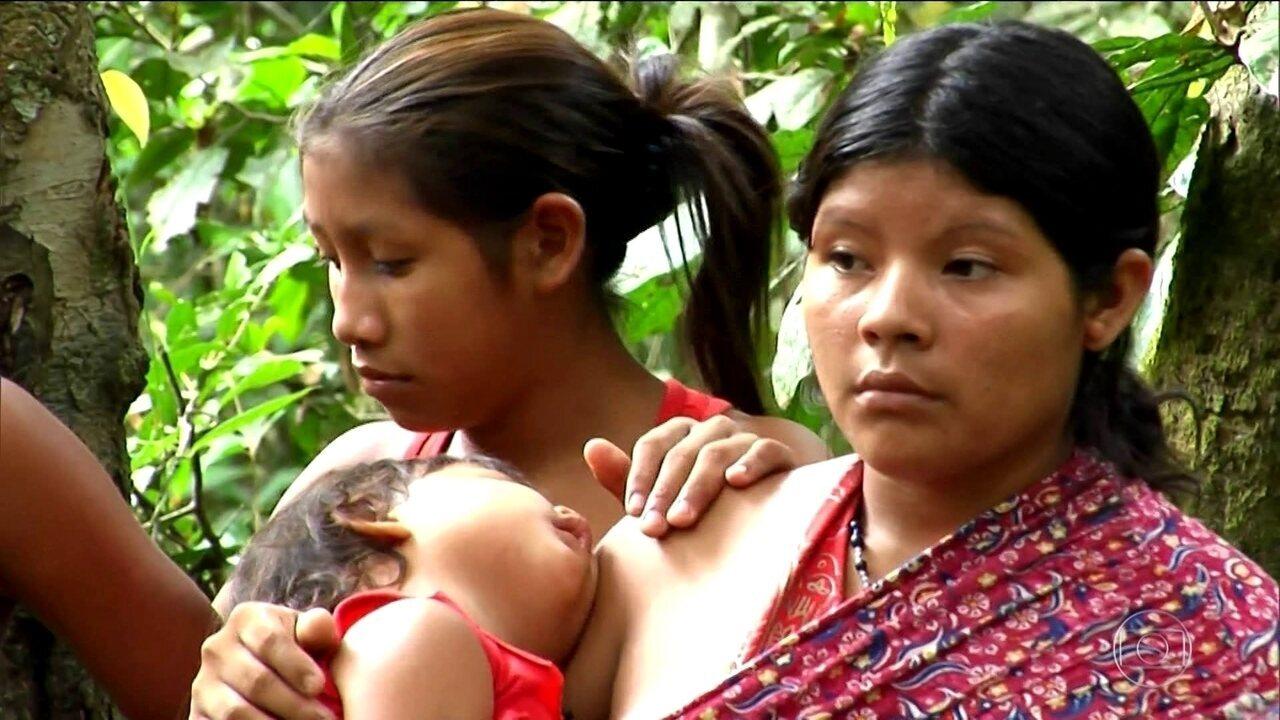 Índios da terra Awá-Guajá acusam fazendeiros de invadir áreas protegidas
