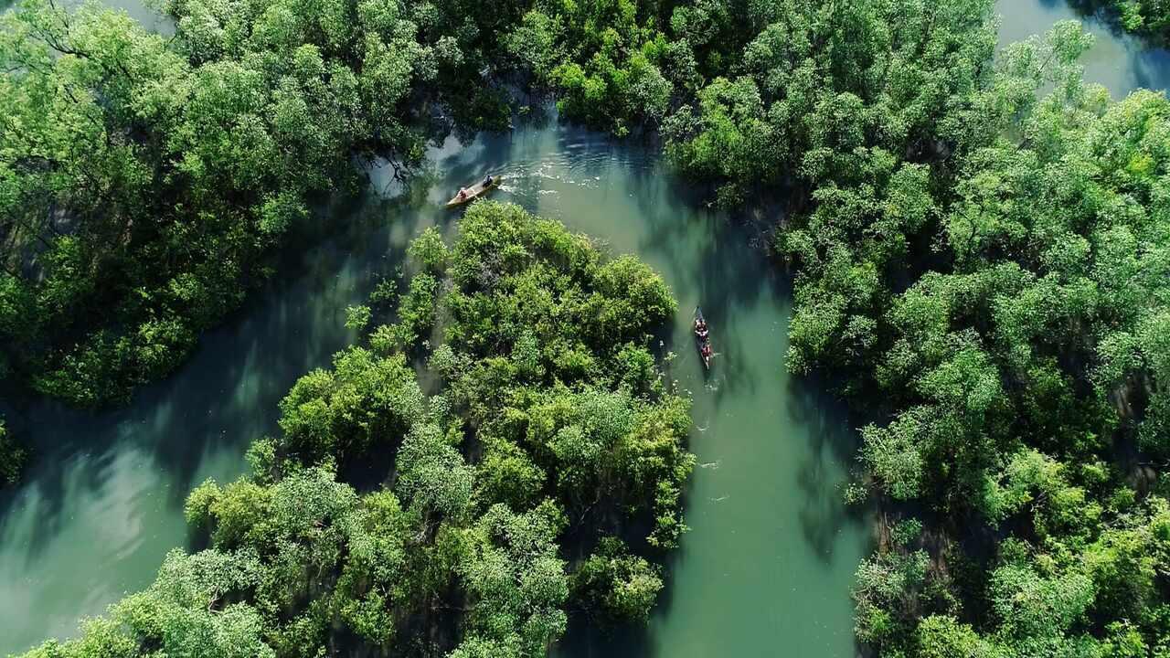Um roteiro inesquecível! Confira as belezas da reserva ecológica do Sebuí, no 'Plug'