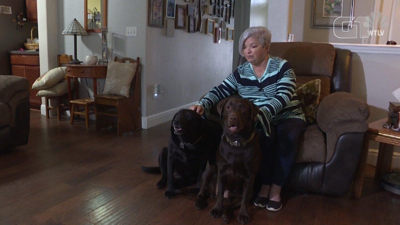 Cachorras buscam ajuda e salvam vida de dona nos EUA