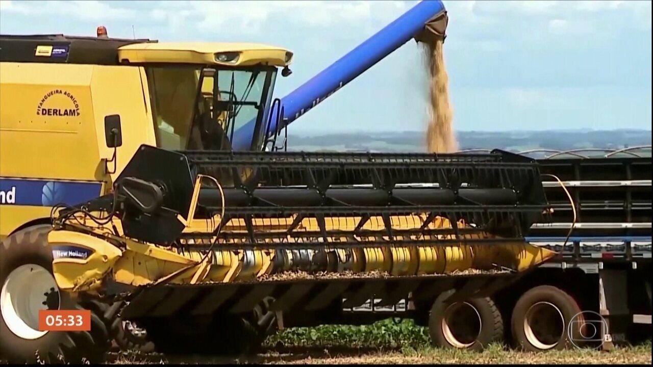 Entenda a lei Kandir, que isenta agricultores da cobrança do ICMS nos casos de exportação