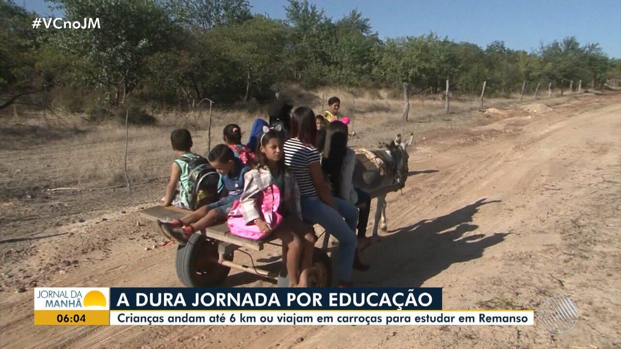 Sofrimento: crianças andam até 6 km ou viajam em carroças para estudar em Remanso