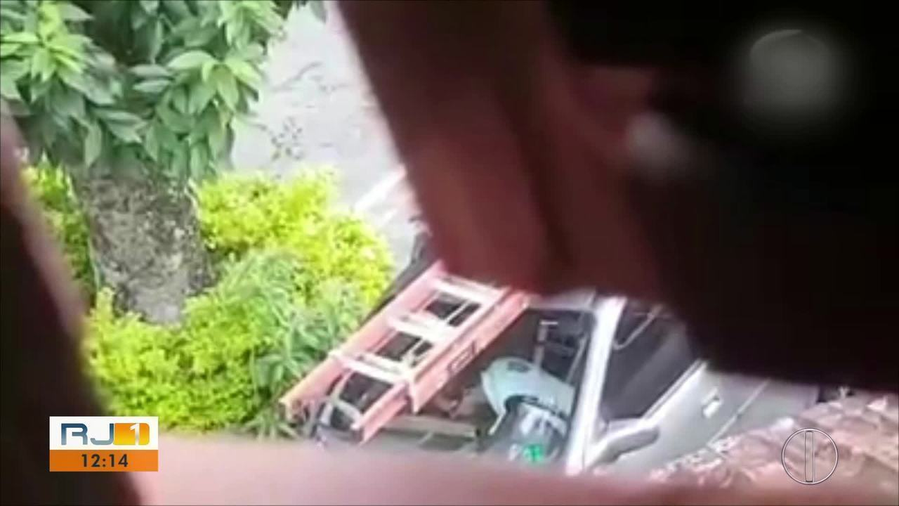Vídeo flagra homem espancando gatos em Petrópolis