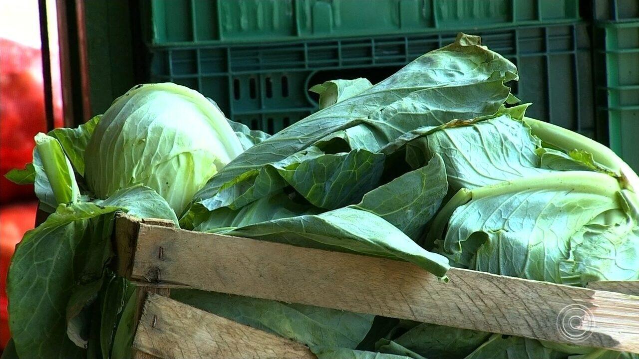 Mais de 500 quilos de alimentos da Ceasa de Jundiaí são destinados a famílias carentes