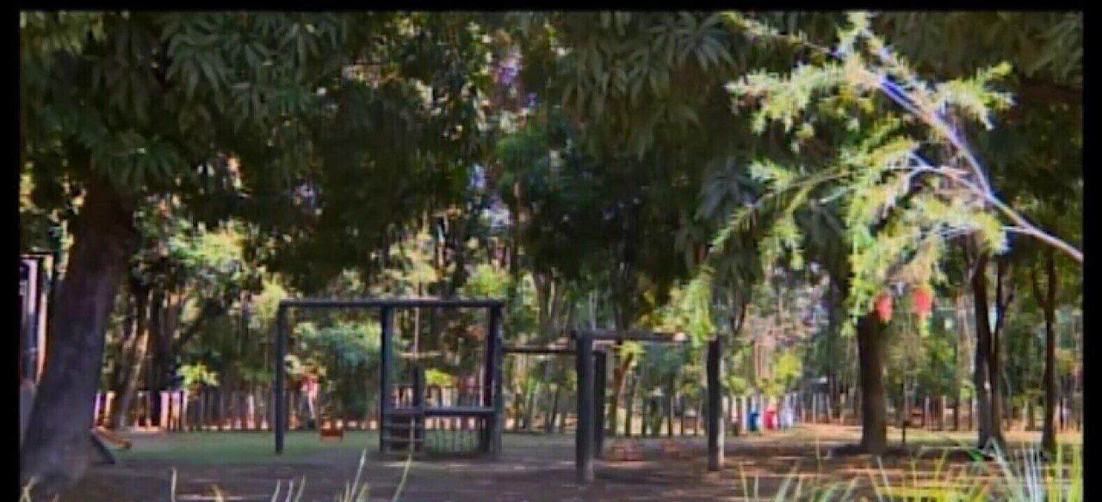 Carrapato transmissor da febre maculosa é encontrado no Parque da Ilha em Divinópolis