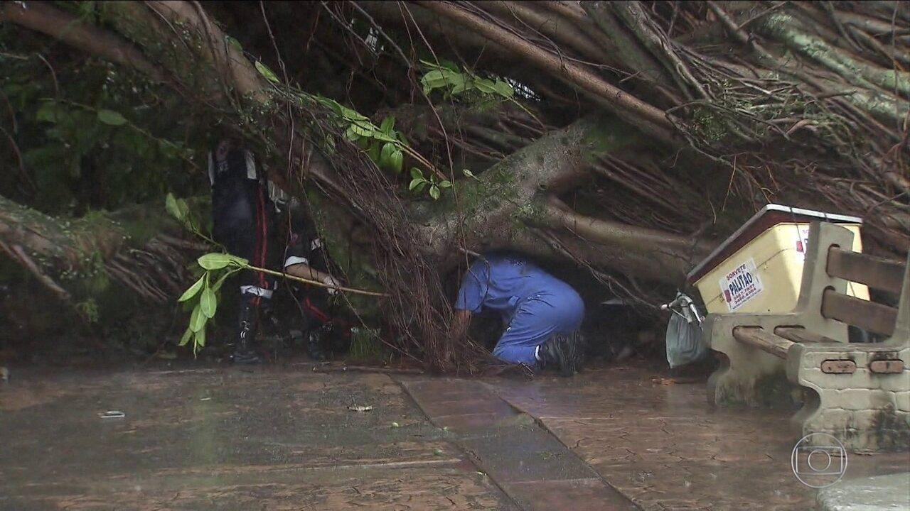 Rajadas de vento causam destruição no RJ e em SP; uma mulher morre na Baixada Santista