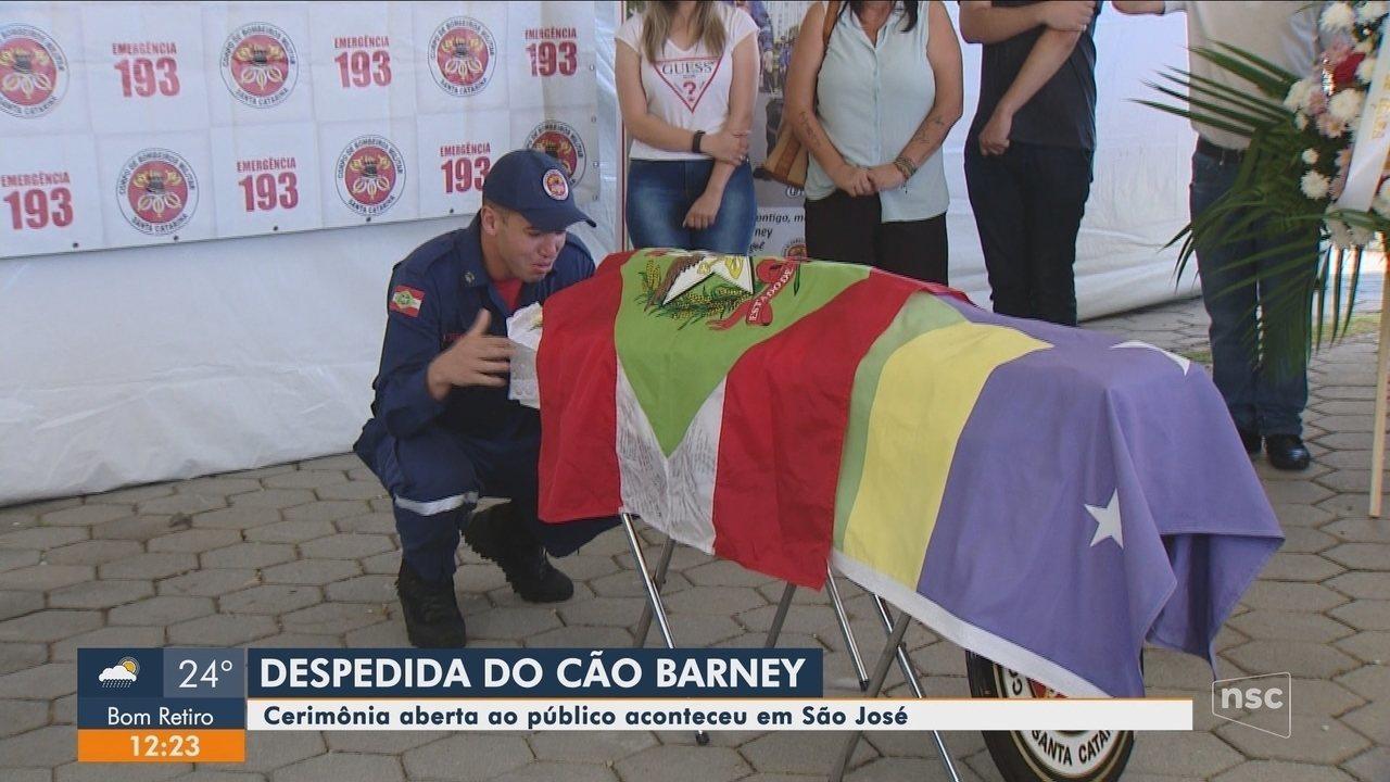 Corpo de cão Barney foi cremado em São José