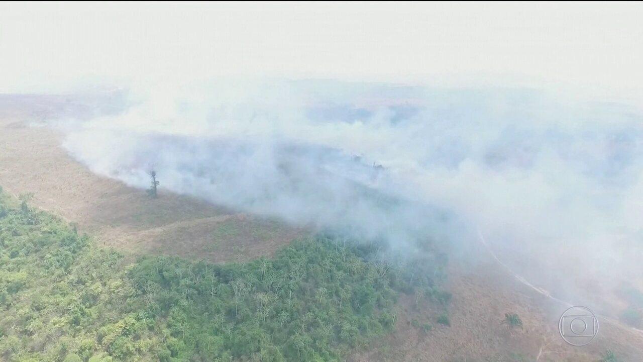 Desmatamento em áreas protegidas da Amazônia avança