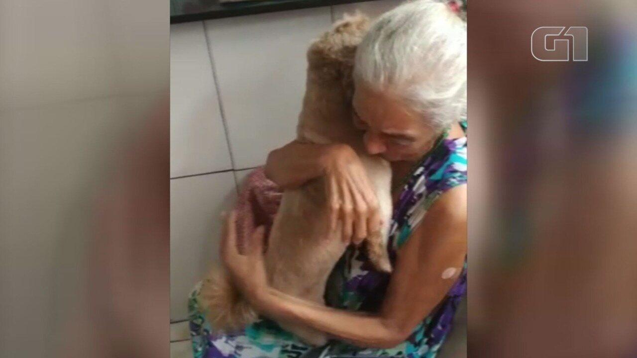 Idosa chora ao reencontrar cão desaparecido e comove a web em Guarujá, SP