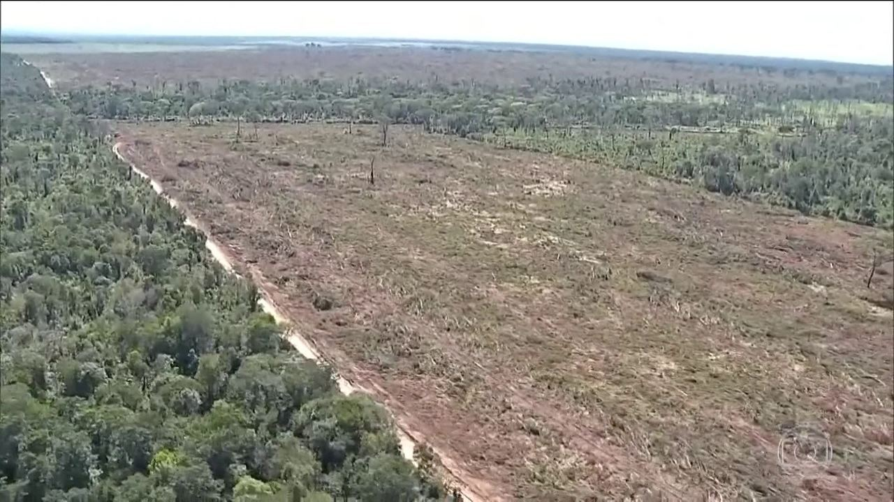 Noruega e Alemanha rejeitam mudanças no fundo de preservação da Amazônia