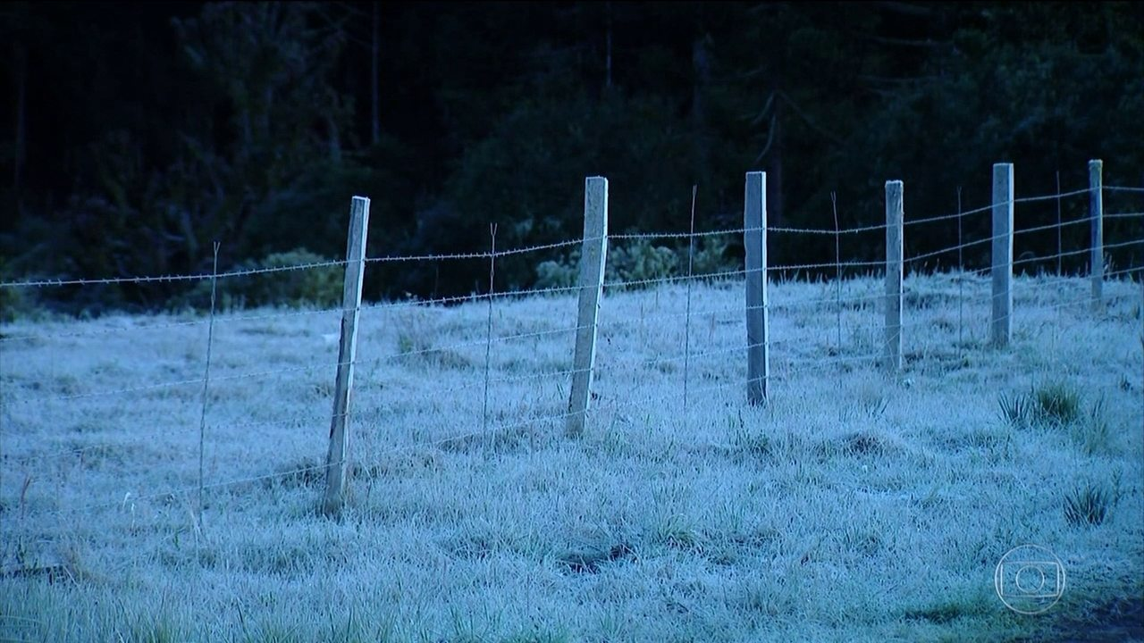 Cidades do sul do país amanhecem com geadas e temperaturas negativas