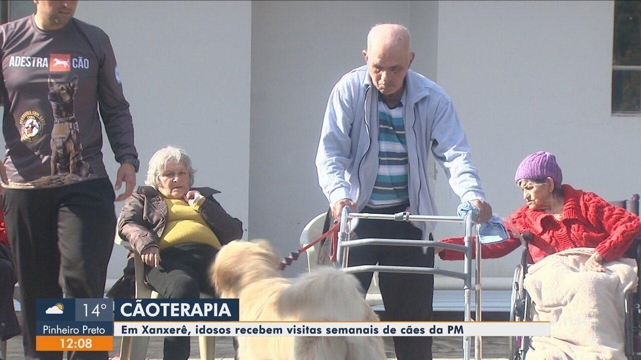 Idosos recebem visitas de cães da PM para ajudar em terapia em SC
