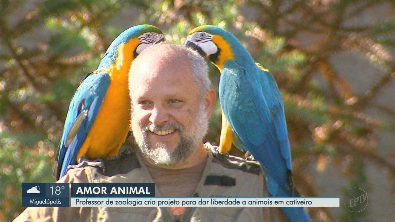 Professor de zoologia cria projeto pra dar liberdade a pássaros em cativeiro