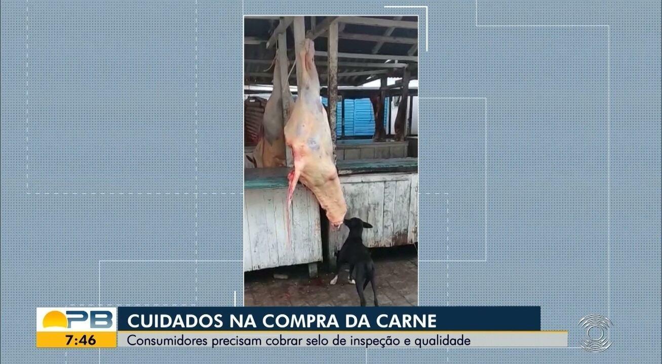 Flagrante na Feira; cachorro morde carne exposta para venda em feira de Remígio