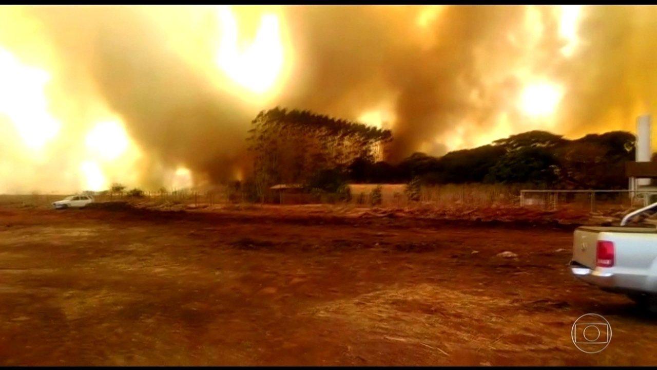 JORNAL NACIONAL: Mato Grosso enfrenta a pior temporada de queimadas em sete anos