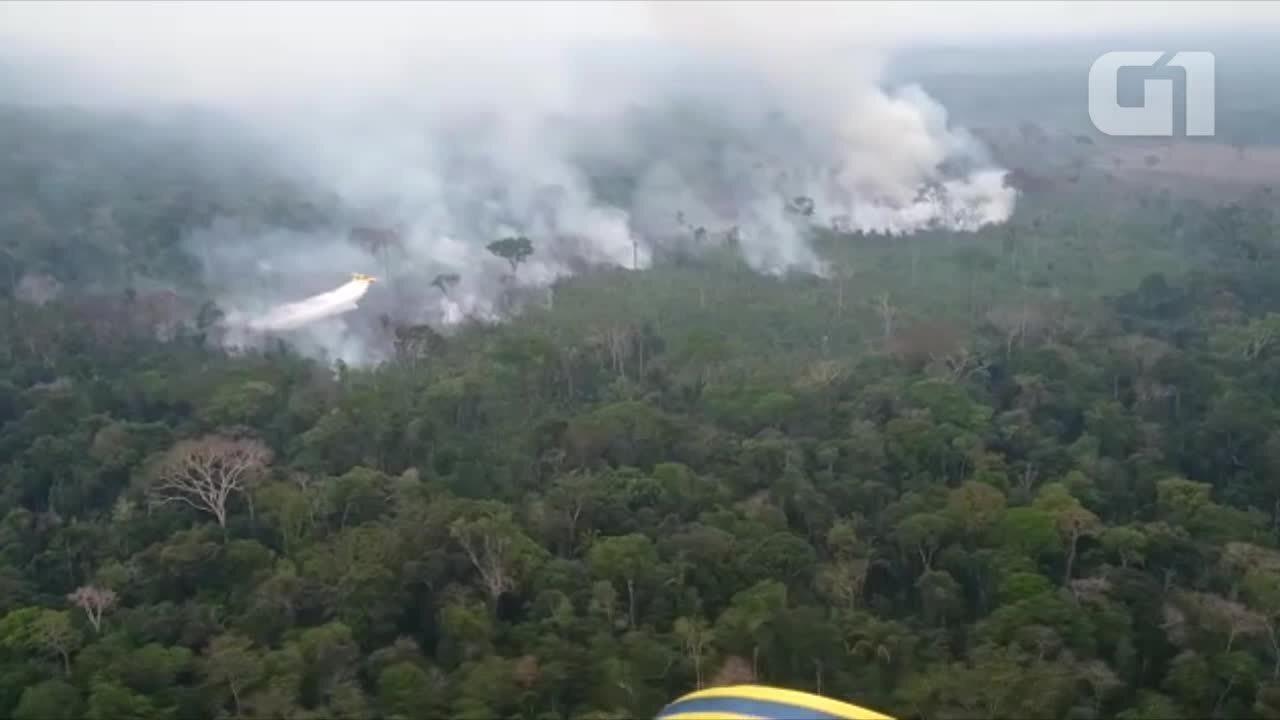 Avião dos Bombeiros tenta combater chamas na divisa entre RO e AM