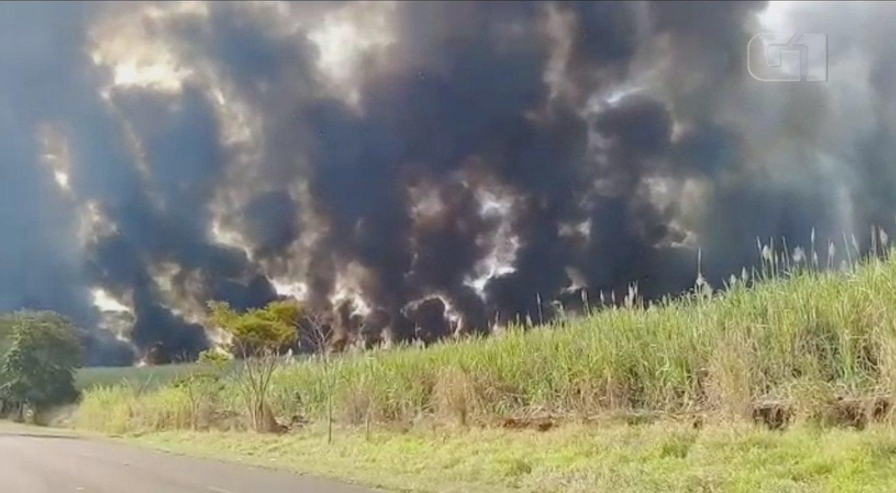 Queimadas atingem áreas rurais próximas a estradas no Centro-Oeste Paulista