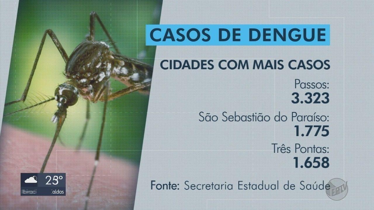 Sul de Minas já tem mais de 14,1 mil casos de dengue em 2019, aponta Ministério da Saúde