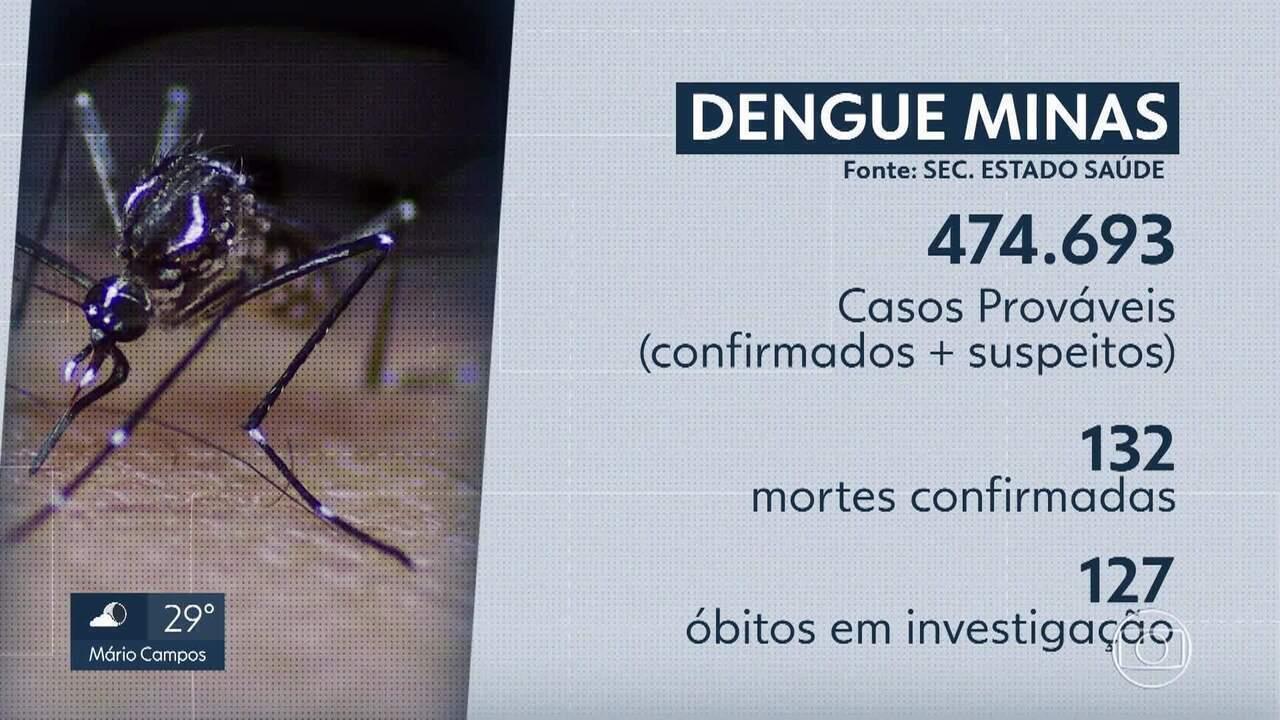 Mudança do tipo de dengue em MG é um dos fatores para aumento de casos em 2019
