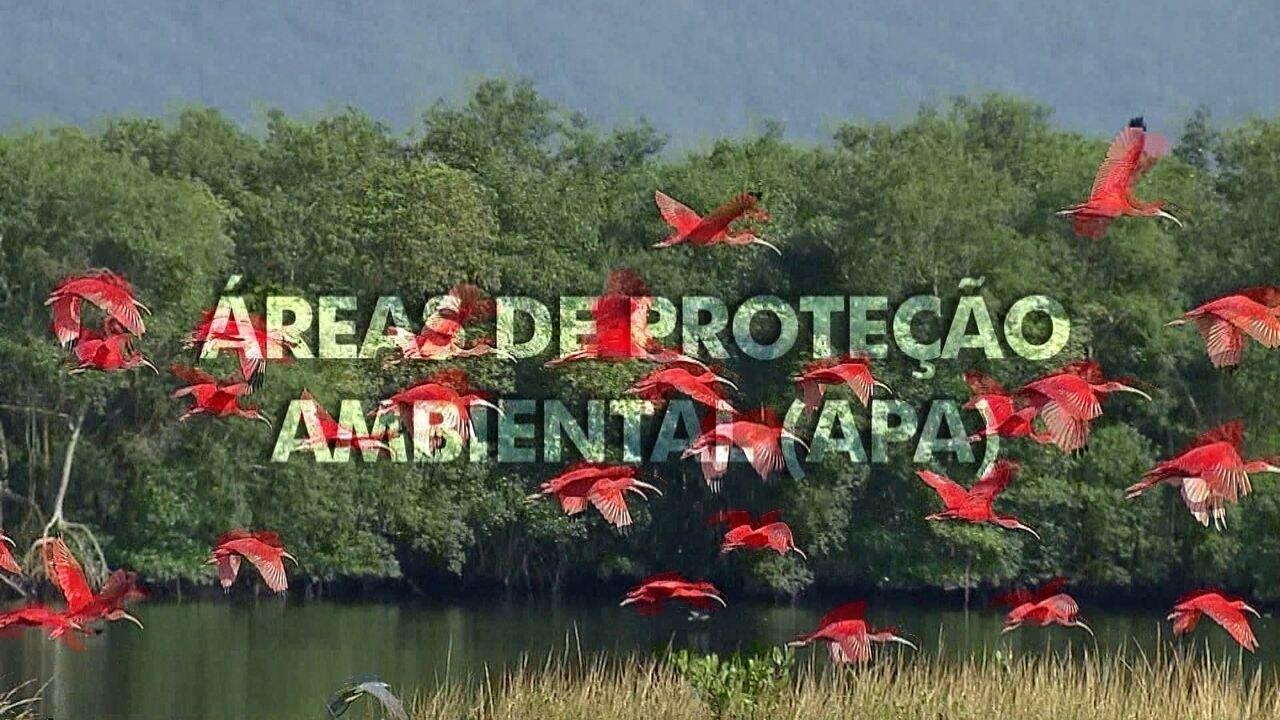Extra: Áreas de Proteção Ambiental (APA)