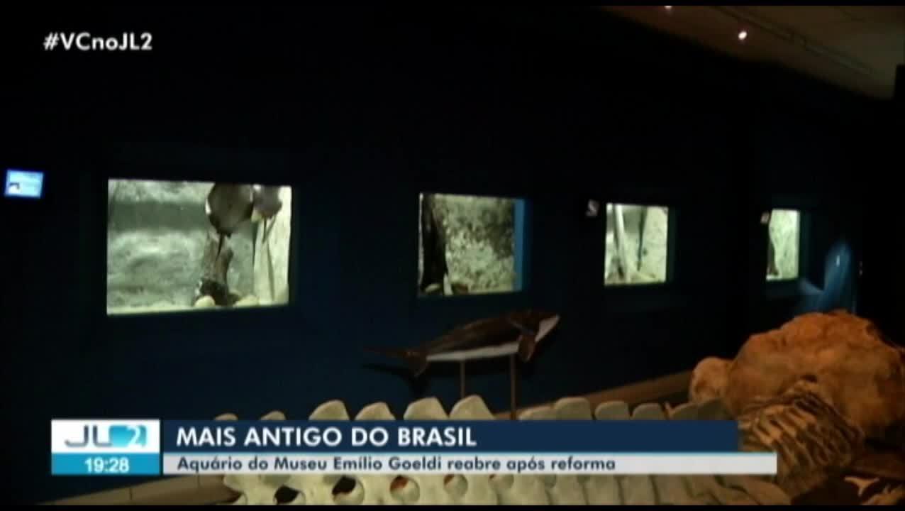 Aquário do Museu Emílio Goeldi, em Belém, está de volta