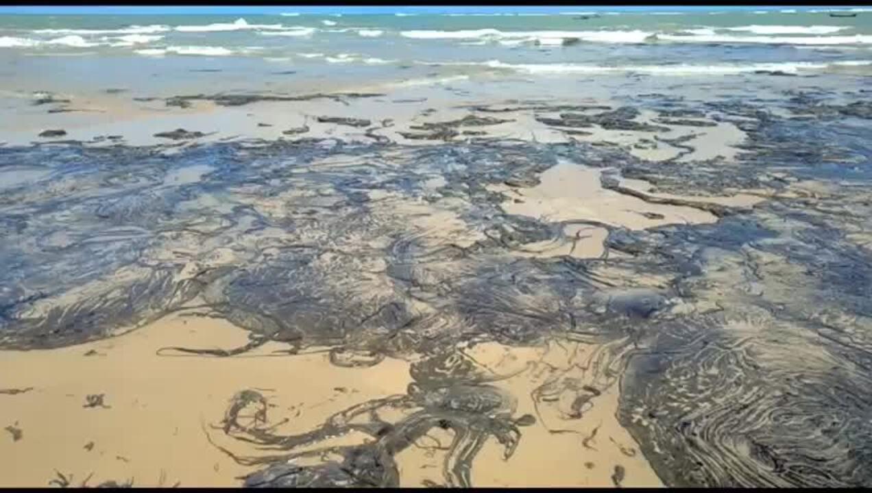 Mancha de óleo foi avistada na Lagoa do Pau, em Coruripe