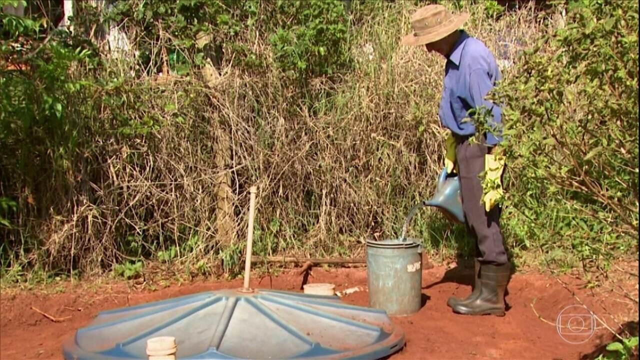Saiba como fazer uma fossa para a produção de adubo orgânico