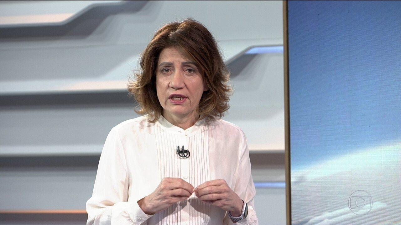Bom Dia Brasil | Miriam Leitão: 'Desmatamento vai aumentar 100% no 1º trimestre de 2020' | Globoplay