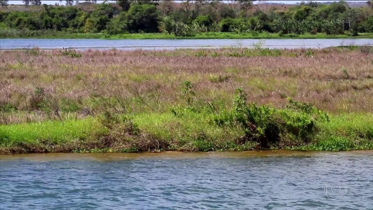 Pesquisadores analisam a qualidade da água no Rio São Francisco