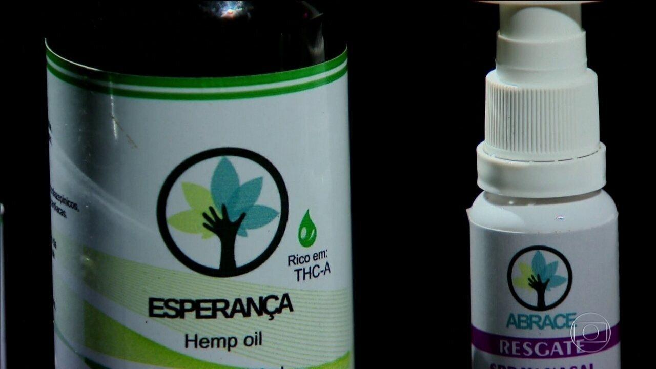Anvisa libera venda de produtos à base de cannabis, mas cultivo é proibido