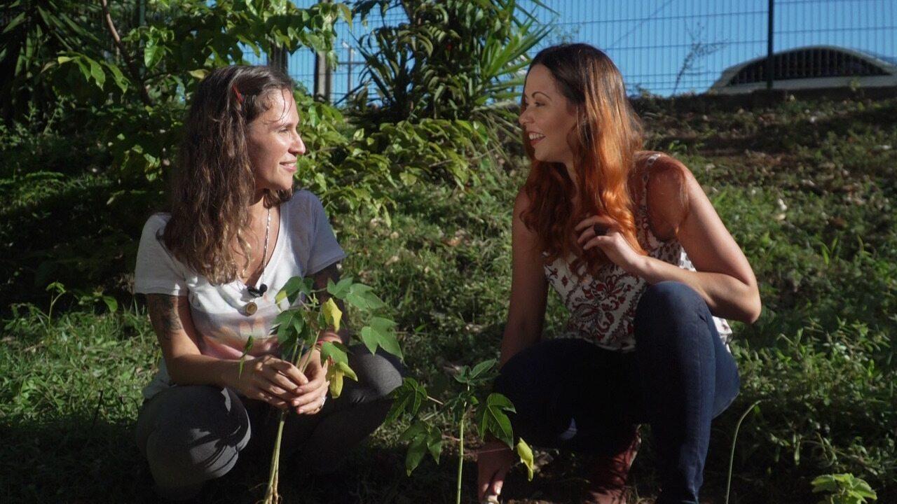Camila Nobre conta como começou uma horta comunitária no trabalho