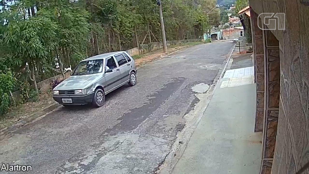 Câmera de segurança registra motorista atirando gatos pela janela de carro