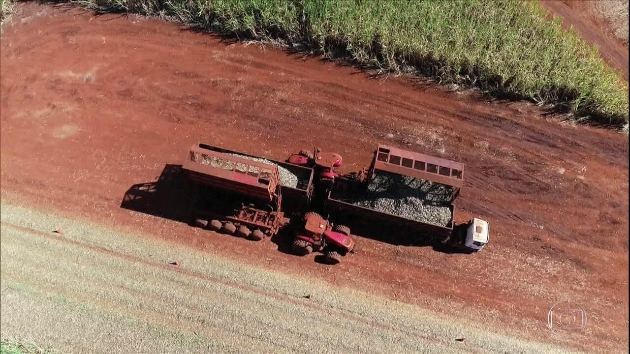 Prestes a completar 40 anos, Globo Rural prepara reportagem sobre tecnologia no campo