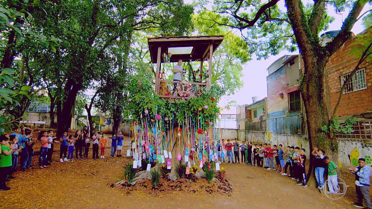 Escola estadual Professora Dulce Leite Da Silva recebe a Arvore dos desejos