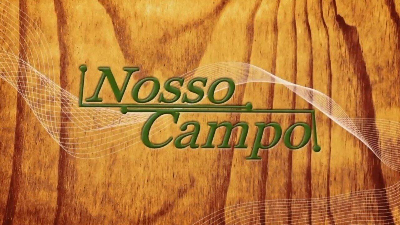 Retrospectiva Nosso Campo: confira a 1º parte do programa deste domingo, 19