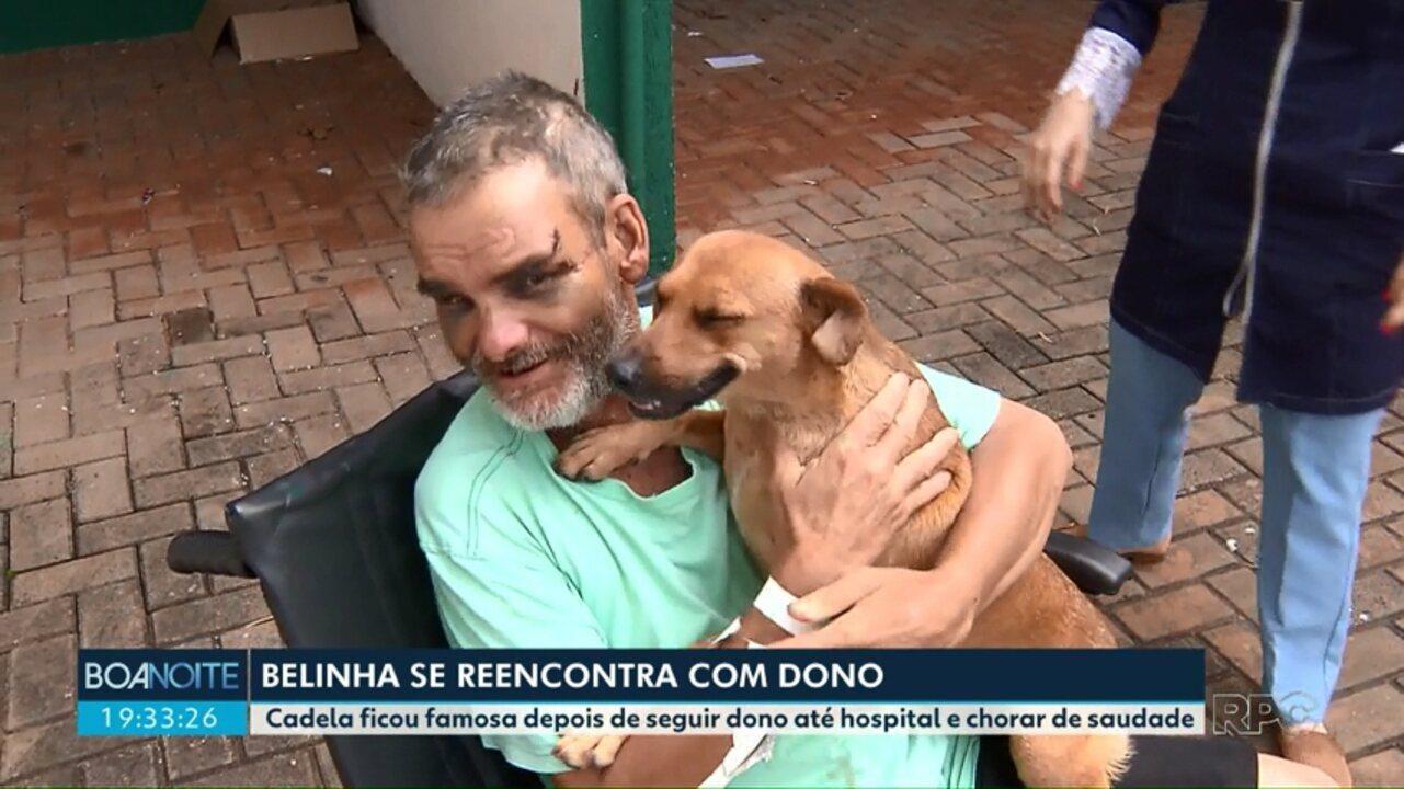 Homem que foi internado reencontra cadela que foi atrás dele no hospital