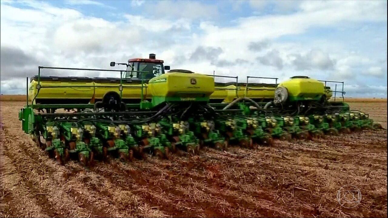 Em Mato Grosso, agricultores colhem a soja e já fazem o plantio do milho