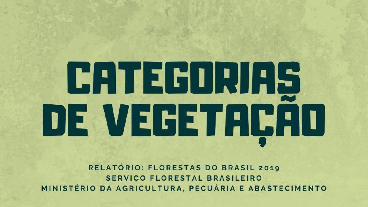Conheça os tipos de vegetação considerados para a classificação de florestas