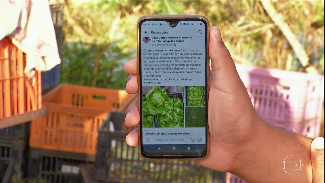 Delivery de hortaliças vira alternativa para manter renda de agricultores no interior de SP