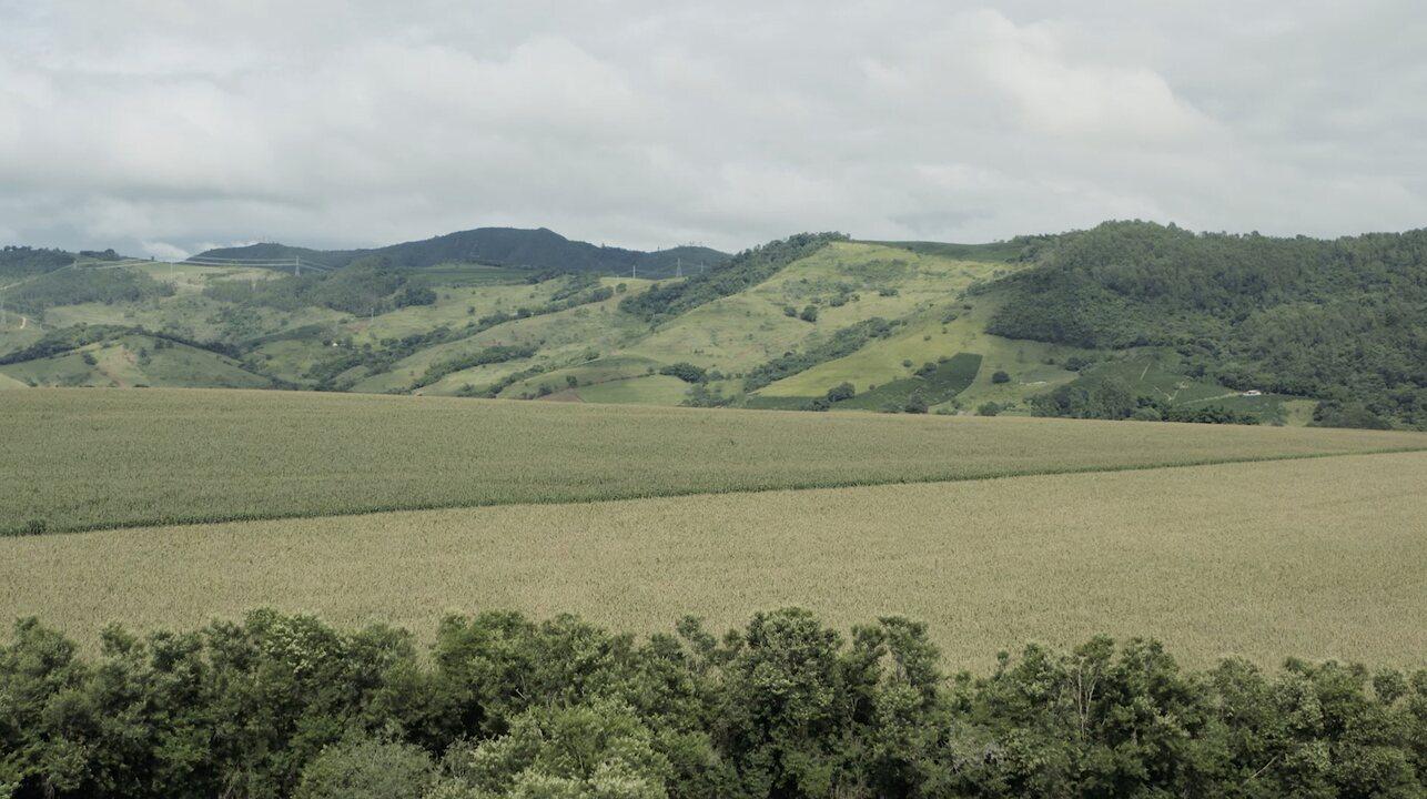 Como sustentabilidade e o agronegócio podem ser aliados? | na ...