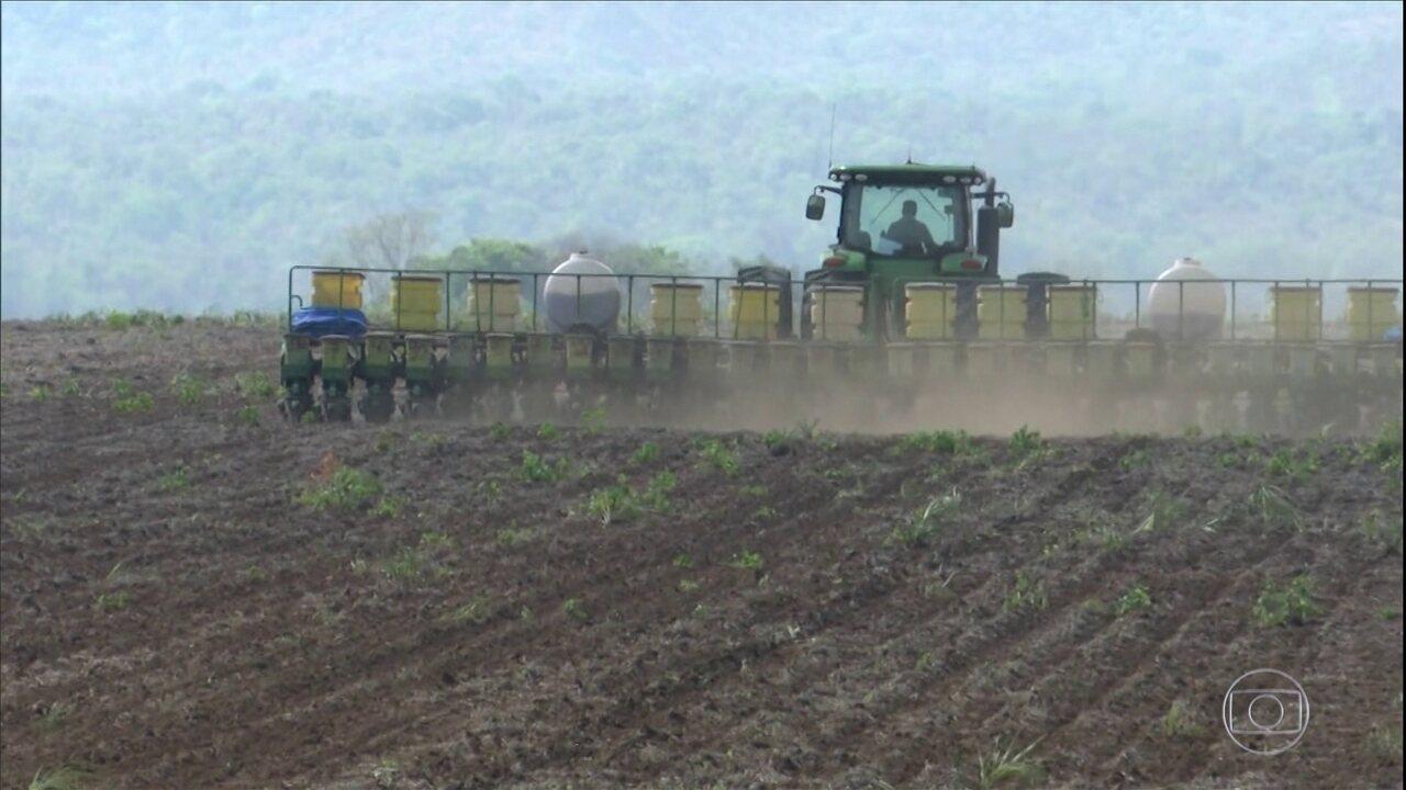 Produtores do Maranhão iniciam plantio da soja