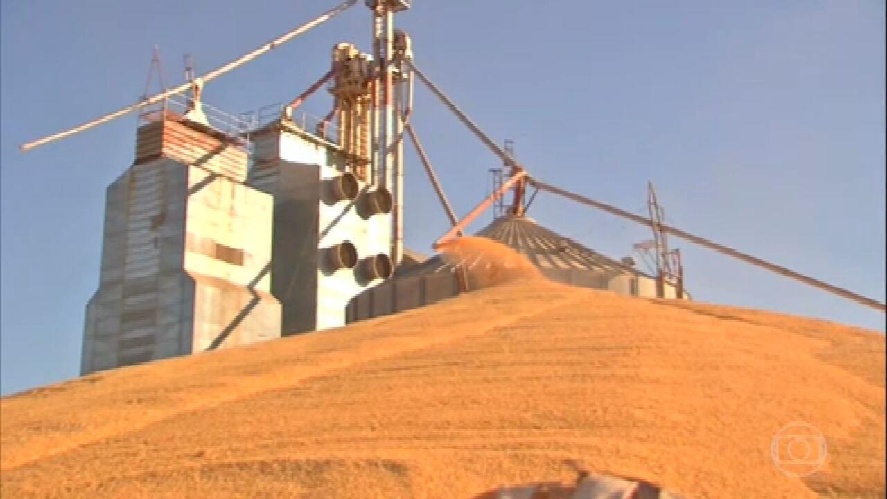 Agricultores sofrem com falta de armazéns em Mato Grosso