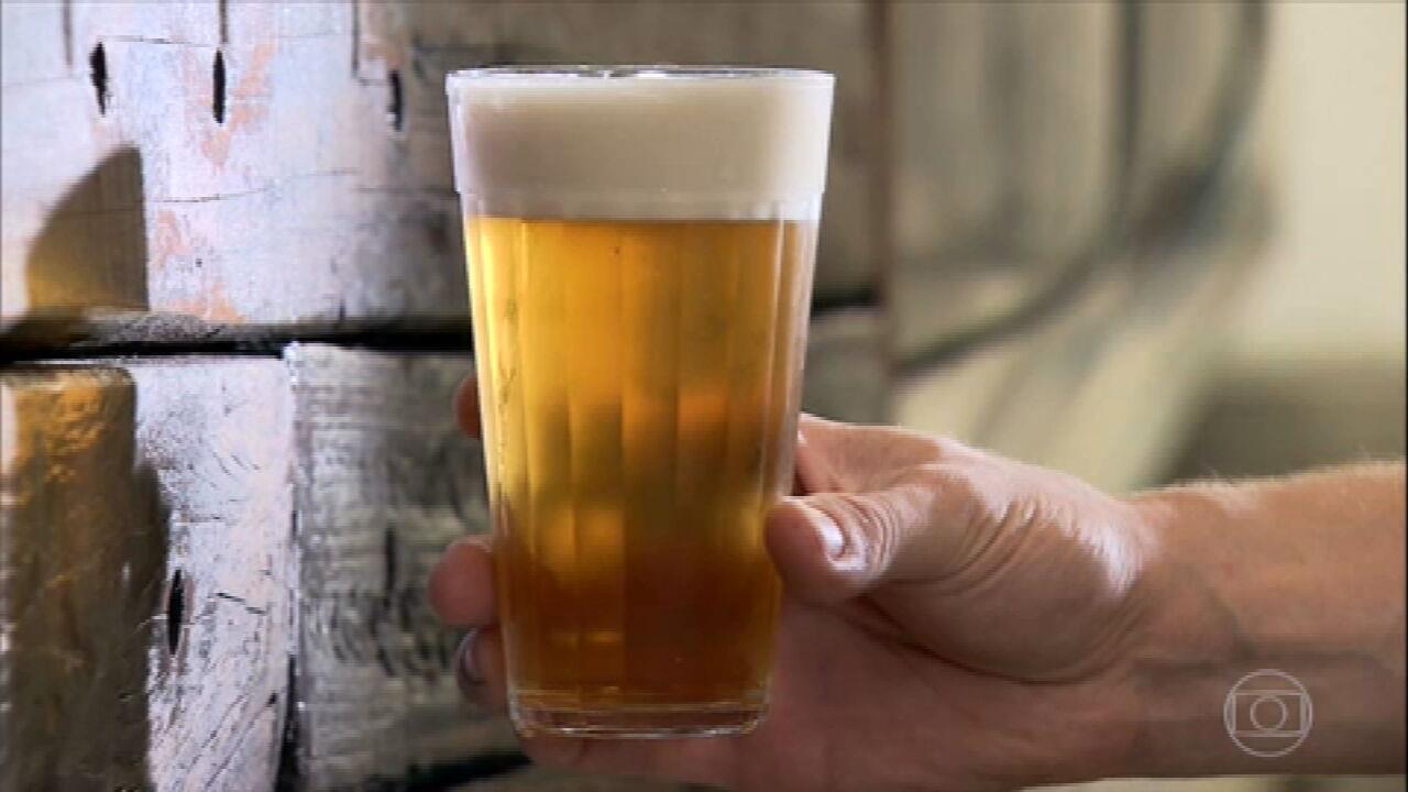 Produção nacional de lúpulo pode ajudar cervejeiros a reduzir custos